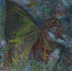 Nocturnal Reverie~ 2006